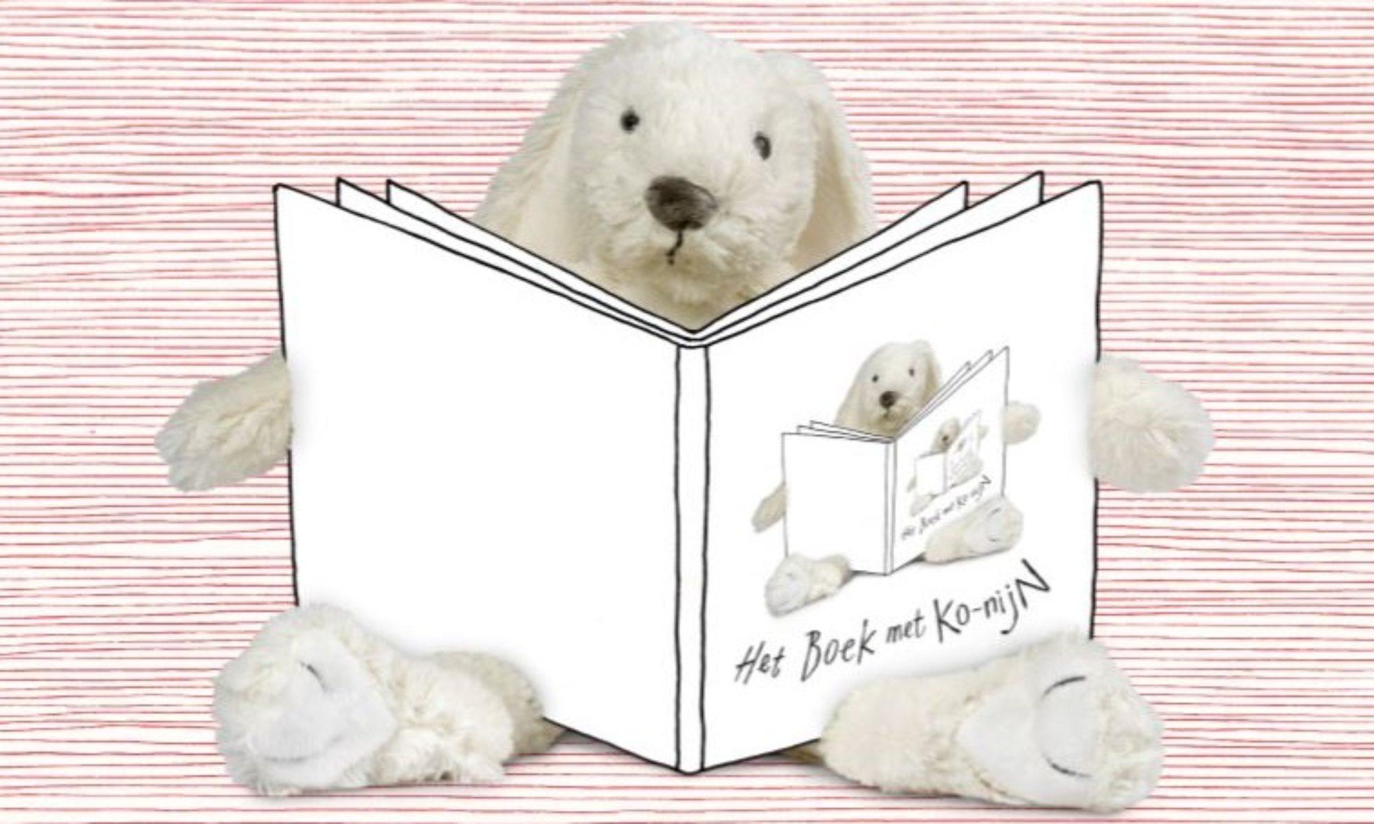 Het boek met Ko-Nijn